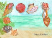ZNC Seashells by the Seashore by Nadean Walters_image